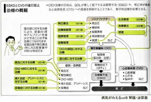 CKD治療の概観