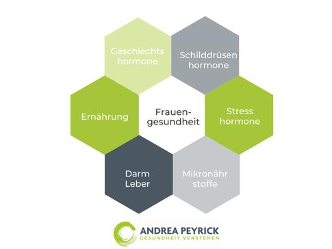 Heilpraktiker Coesfeld Münster Frauengesundheit hormonelle Dysbalancen Ernährung Geschlechtshormone Schilddrüse Darmgesundheit