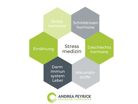 Heilpraktiker Coesfeld Münster Stressmedizin Psycho-Neuro-Immunologie kPNI VNS-Analyse