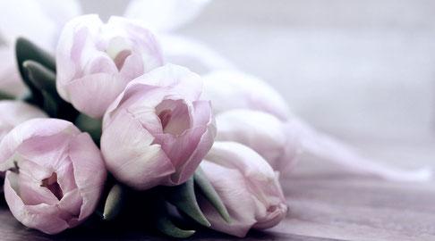 Faire entrer le printemps dans son intérieur (2)