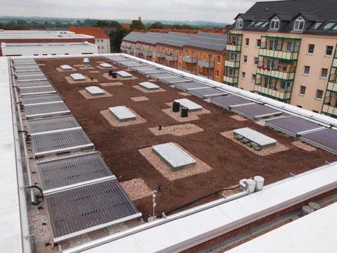Solares Kühlen und Heizen, Prenzlau, Deutschland