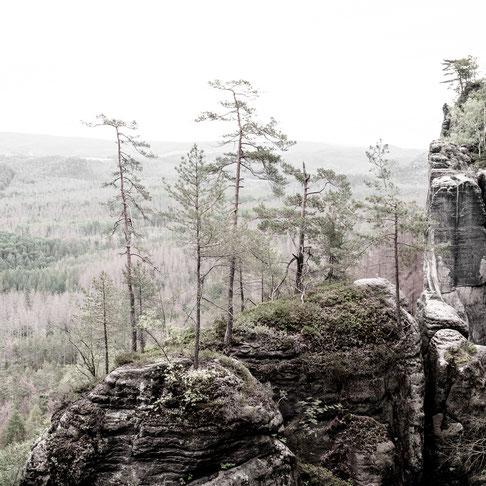 elbe sandstone mountains saxony germany