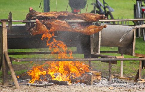 Schwein in Flammen