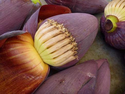 baba figue, la fleur du bananier utilisée dans la cuisine créole