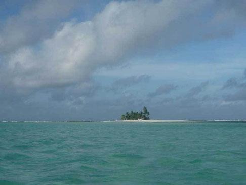 Prison Island...
