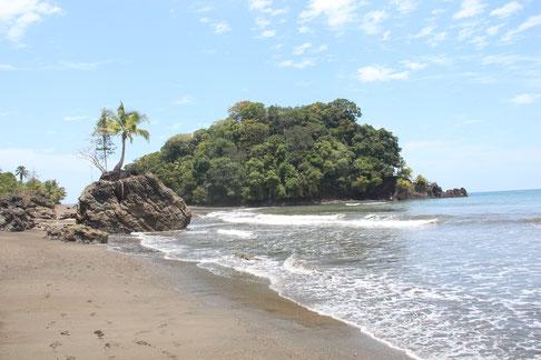 Walbeobachtung Chocó Pazifik Kolumbien Reisen Erlebnis