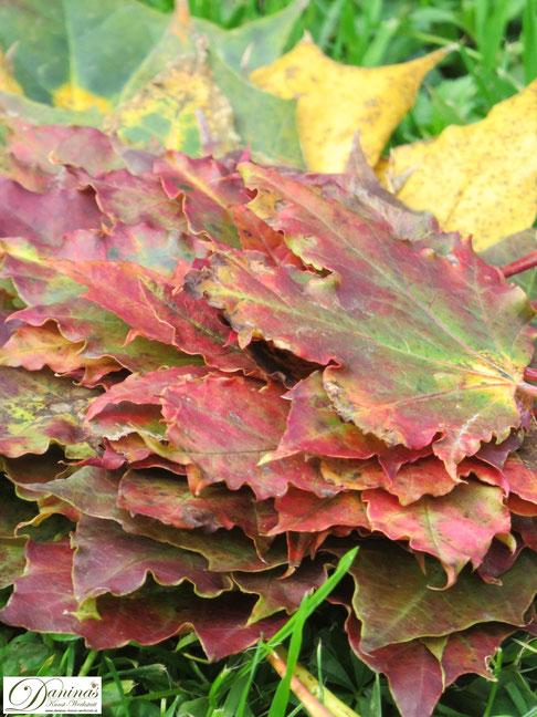 Schöne bunte Herbstblätter für ein kreatives Landart Projekt im Garten oder zum Basteln und Dekorieren - by Daninas-Kunst-Werkstatt.at