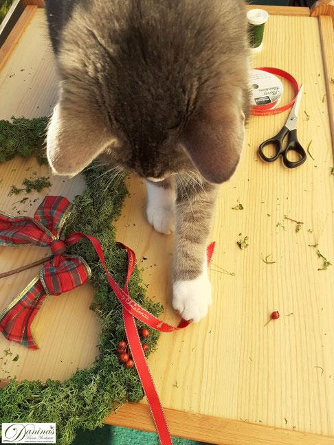 Moosherz selber machen mit Hagebutten - DIY Weihnachtsdeko Idee by Daninas-Kunst-Werkstatt.at