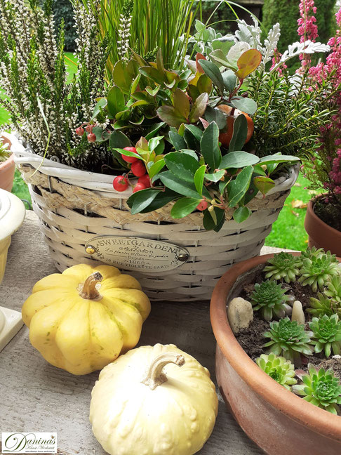 Herbstdeko für draussen ganz einfach selber machen mit Herbstblumen, Kürbissen, Quitten und bunten Herbstblättern - Idee by Daninas-Kunst-Werkstatt.at