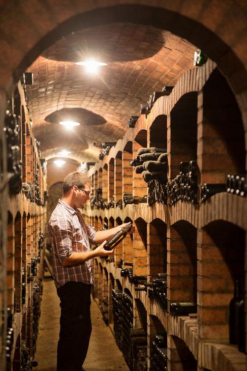 Matthias Heiß im Weinkeller in Engelmannsbrunn