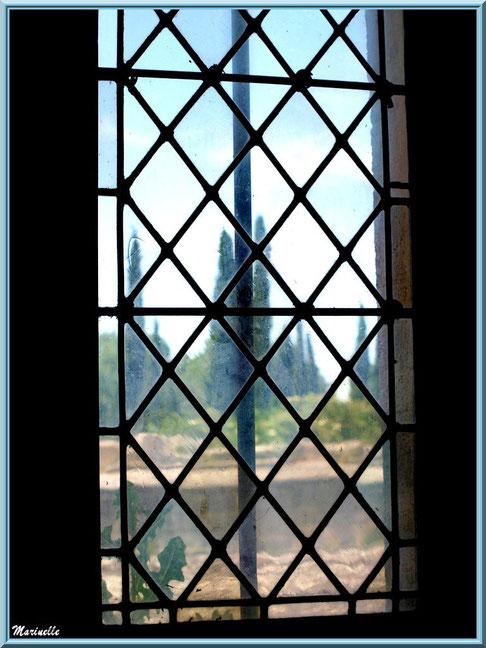 Fenêtre avec vue sur les jardins de l'abbaye de Silvacane, Vallée de la Basse Durance (13)