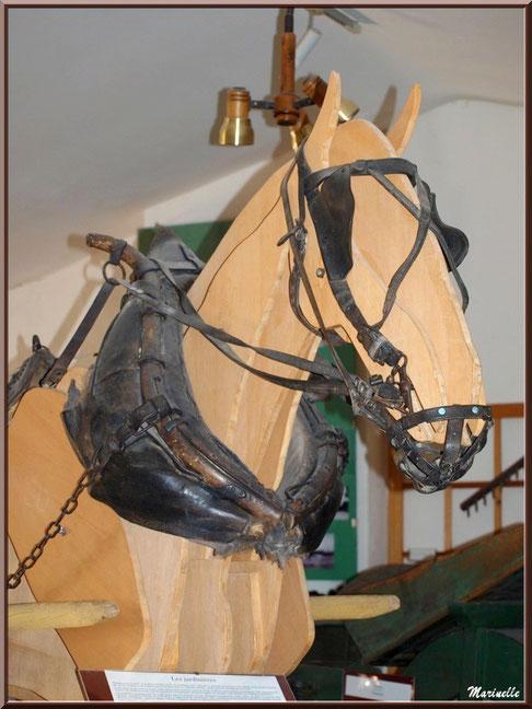 Musée Marc Deydier, village de Cucuron, Lubéron (84) : scène ancestrale, travaux des champs