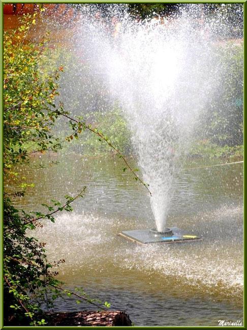 Jet d'eau, Zoo du Bassin d'Arcachon, La Teste de Buch (33)