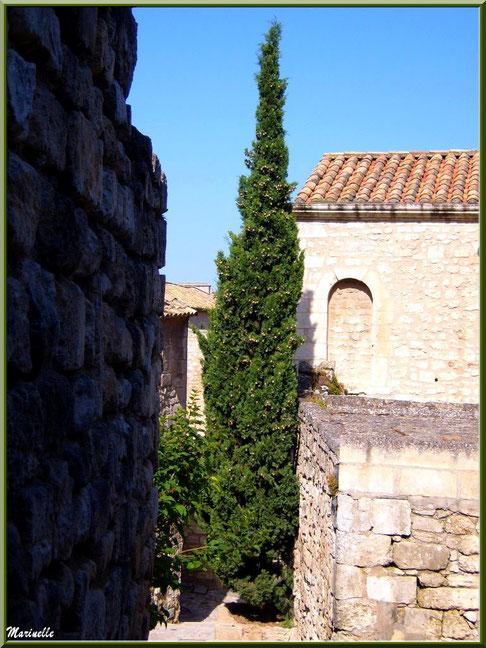 Cyprès, verdure et vieilles pierres au détour d'une ruelle, Baux-de-Provence, Alpilles (13)