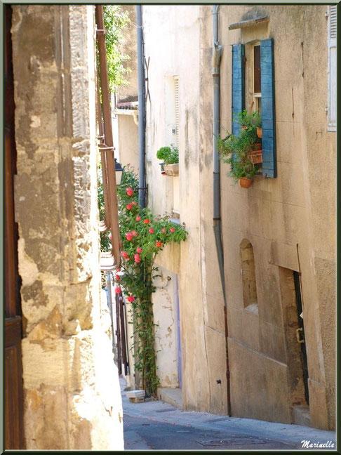 Ruelle fleurie, village de Cucuron, Lubéron (84)