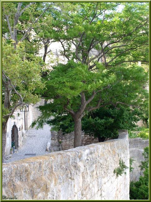 Ruelles et verdure, Baux-de-Provence, Alpilles (13)