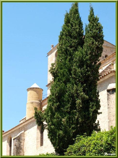 Eglise Notre Dame de Beaulieu, village de Cucuron, Lubéron (84) : vue d'un des côtés