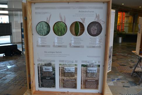 Verschiedene Nutzpflanzen und Erd-Arten - letztere mit Fühlprobe - werden an dieser Station vorgestellt. Foto: C. Flint