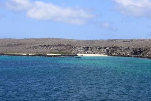 Kreuzfahrten auf den Galápagos Inseln mit ECUADORline