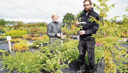 Gärtnermeister Tobias Denker und Nicole Davila umringt von Bienenbäumen in unterschiedlicher Größe.