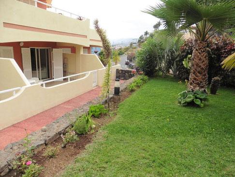 Große Grünfläche mit typisch kanarischen Pflanzen direkt vor der Terrasse des Apartments.