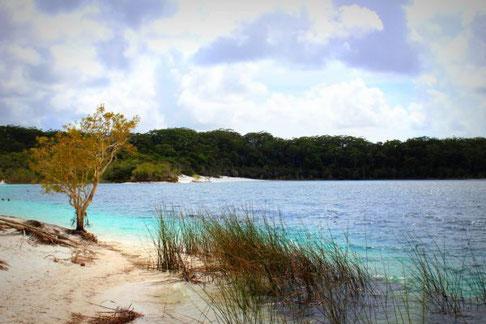Lake McKenzie Fraser Island, Queensland, Australien
