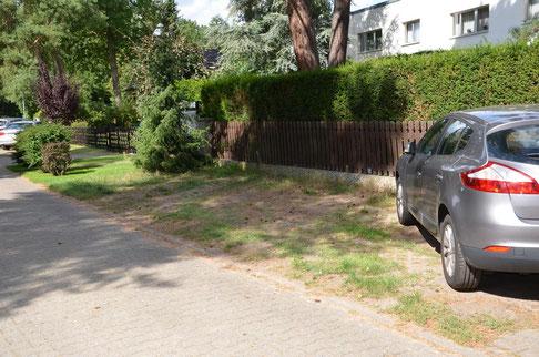 Parkmöglichkeit direkt vor der Praxis