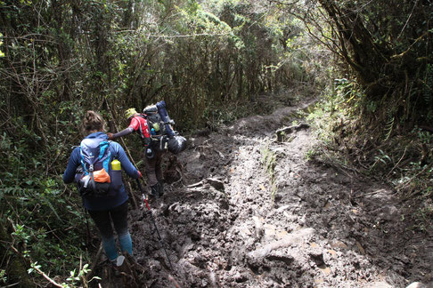 The slippery and muddy trails made it very difficult to climb down.