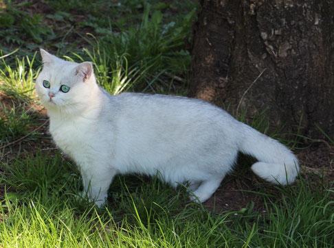 Winnie im Garten, im Alter von 17 Monaten (Foto: 17.4.2021)