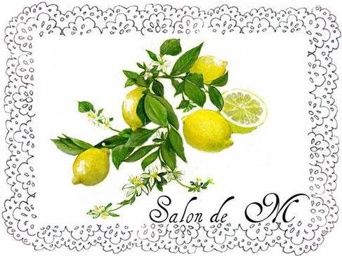 Frozen lemon ブライダル インナー ウェディング ドレス 下着 結婚 レモン
