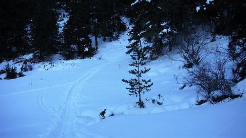 Vistes de la ruta de raquetes fins a la Tosa d'Alp