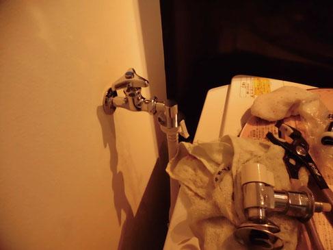 やっぱりノーマル水栓にして鼻先だけアタッチメント交換