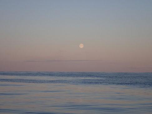 Barentssee. Mitternachtsvollmond. 68°9´N 40°21´E