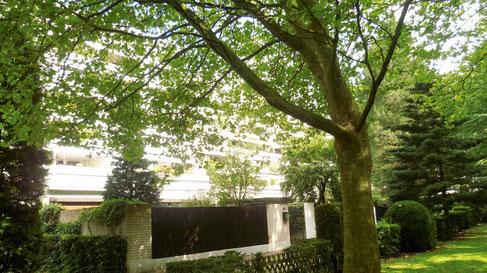 Bild: Gartenstadt Hannover-Mühlenberg