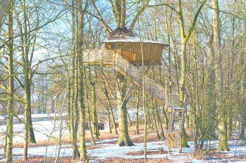 Cabane dans les arbres - Baie de somme - Château des Tilleuls - locations insolites - Picardie