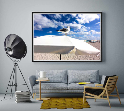 Fotografie Strand, Beach Bird - nonoyes
