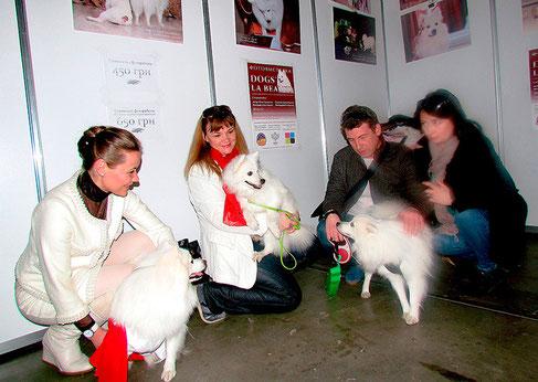 japanese spitz fotos, photo exhibition Dogs LA BEAUTY, Kiev, Ukraine, japanese spitz Ukraine, japanese