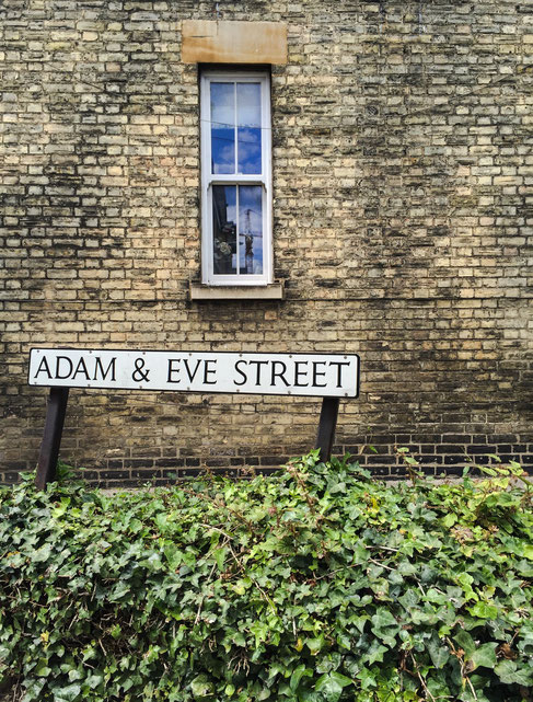 image: nina luca, swiss blogger, uk blogger, cambridge, cambridge university, cambridge college, england, british lawn, my journey, language school, ec school, adam and eve, adam & eve street