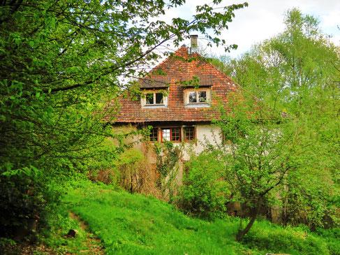 Biohof Bauernhaus am Bodensee