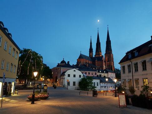 Der Dom in Uppsala in einer hellen Frühlingsnacht