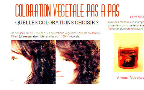 coloration vegetale mode d'emploi