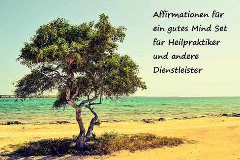 Baum wirft Schatten, steht am STrand, dahinter blaues Meer, Urlaubsfeeling, Freude