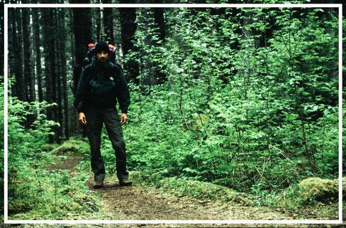 Alaska_1_Reisefotograf_Abenteurer_Jürgen_Sedlmayr_13