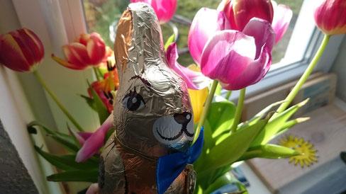 Das Team vom Ferienhof Volkertswarft wünscht frohe Ostern!