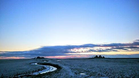 In nur drei gehminuten gelangt man vom Norderdeich über den Zeltplatz zur Volkertswarft. Noch liegt die Hallig im Winterschlaf.