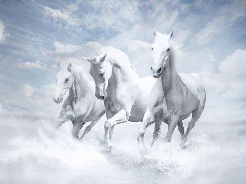 Après que les 4 anges enchaînés près du fleuve Euphrate ont été relâchés, apparaît une armée céleste composée de 200 millions de cavaliers.