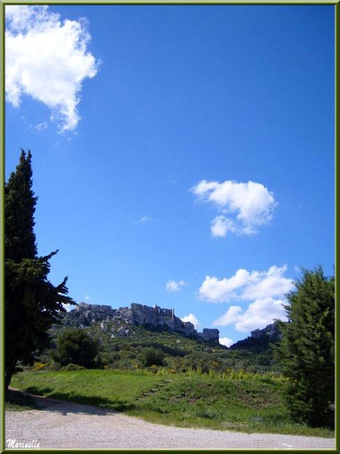 Le Château des Baux-de-Provence vu depuis le vignoble du Mas Sainte-Berthe, Baux-de-Provence, Alpilles (13)