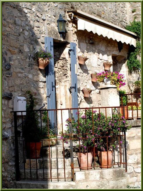 Habitation ancienne bien fleurie, Baux-de-Provence, Alpilles (13)