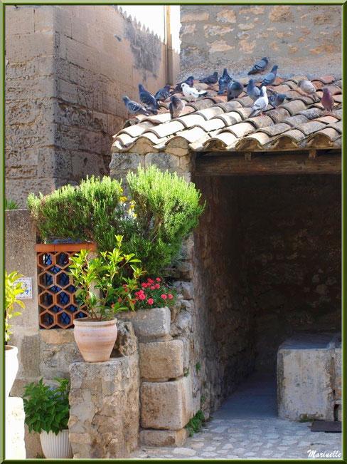 Lavoir des Porcelets et son recoin fleuri, Baux-de-Provence, Alpilles (13)