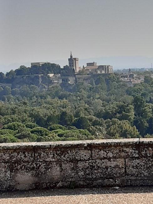 Bild: Les Jardins de l´Abbaye Saint André in Villeneuve-lès-Avignonleneuve-lès-Avignon, hier Blick auf Pastpalast in Avignon